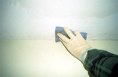 Грибок на стенах - как вывести в квартире, чем опасен для здоровья?